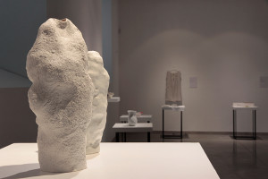 Snow Vase (Maxim Velcovsky)_foto Olga Grabiwoda