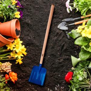 Przygotowujemy glebę pod wysiew trawy